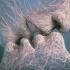 К чему снится поцелуй – толкование по соннику!